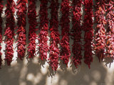 Chili Ristras, Chimayo, New Mexico, USA Photographic Print by Michael Snell