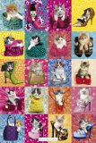 Kimberlin Cat Collage Photo