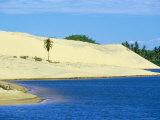 Palm Trees, Sand Dunes and a Lagoon Near the Ceara Coastline, Near Canoa Quedrada, Ceara', Brazil Photographic Print by Marco Simoni