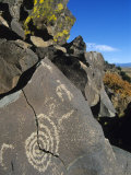 Petroglyphs, Santa Fe County, New Mexico, USA Photographic Print by Michael Snell