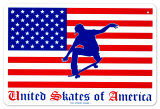 United Skates Of America Blikskilt