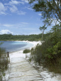 Lake Mckenzie, Fraser Island, Unesco World Heritage Site, Queensland, Australia Photographic Print by Sheila Terry