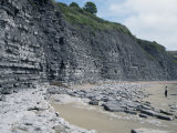 Sedimentary Rocks, Blue Lias, Shale-Limestone Sequences, Jurassic Coast Photographic Print by Tony Waltham