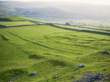 Remnants of Celtic Settlement on Limestone Bench, Hill Castles, Wharfedale, Yorkshire Photographic Print by Tony Waltham