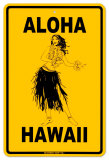 Aloha Hawaii Tin Sign