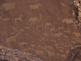 Etchings on Sandstone, 6000 Years Old, Finest Rock Art in Africa, Damaraland, Namibia Photographic Print by Tony Waltham