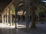 Courtyard of the Hospital of San Juan De Dios, Granada, Andalucia, Spain Photographic Print by Sheila Terry