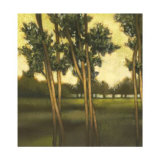 Through the Trees I Limited Edition by  Larson