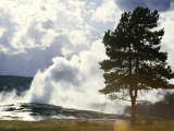 Geothermal Steam from Geyser Vent Between Eruptions, Yellowstone National Park, USA Photographic Print by Tony Waltham