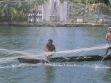 Fisherman Casting His Throw Net in the Coastal Backwaters, Kerala, India Photographic Print by Tony Waltham