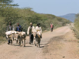 The Long Walk to the Saturday Market at Sof Omar, Southern Highlands, Ethiopia, Africa Photographic Print by Tony Waltham