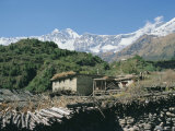 Thakkali House with Dhaulagiri Behind, Kali Gandaki Valley, Annapurna Region, Himalayas, Nepal Photographic Print by Tony Waltham