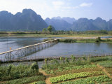 Bamboo Bridge, Vang Vieng, Laos, Indochina, Southeast Asia Photographic Print by Jane Sweeney