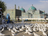 People Feeding the Famous White Pigeons, Mazar-I-Sharif, Afghanistan Photographic Print by Jane Sweeney