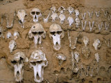 Monkey Skulls Embedded in Mud Wall to Protect Against Evil Spirits, Dogon Village of Telle, Africa Photographic Print by Jane Sweeney