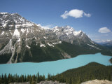 Peyto Lake, Coloured by Glacial Silt, Banff-Jasper National Parks, Canada Photographic Print by Tony Waltham