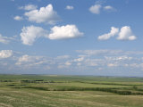 Prairie Farmland, North Dakota, USA Fotografie-Druck von Tony Waltham