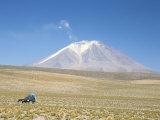 Ollague Volcano, with Summit Fumarole Steam Plume, Andes Mountains, Bolivia, South America Photographic Print by Tony Waltham