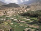 Traditional Jabali Village with Palmery in Basin in Jabal Akhdar, Bilad Sayt, Oman, Middle East Photographic Print by Tony Waltham