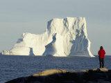 Icebergs in Disko Bay, Qeqertarsuag (Godhavn) on Disko Island, West Coast, Greenland, Polar Regions Photographic Print by Tony Waltham