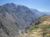 Canyon Below Chivay, Colca Canyon, Peru, South America Photographic Print by Tony Waltham