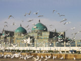 The Famous White Pigeons, Shrine of Hazrat Ali, Mazar-I-Sharif, Balkh Province, Afghanistan Fotografiskt tryck av Jane Sweeney