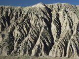 Gully Erosion in Thick Gravel Terrace, Wildrose Canyon, Death Valley, California, USA Photographic Print by Tony Waltham