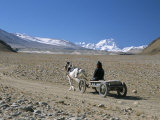 Farmer Going Home Near Tingri, Cho Oyu and Himalayas in Distance, Tibetan Plateau, Tibet, China Photographic Print by Tony Waltham