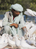 Man Feeding the Famous White Pigeons, Mazar-I-Sharif, Afghanistan Photographic Print by Jane Sweeney