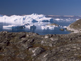 Icebergs from the Kangia Ice Fiord Seen from Hills Above Sermermiut, West Coast, Polar Regions Photographic Print by Tony Waltham