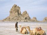 Tufa Towers at Lac Abhe, Afar Triangle, Djibouti Fotografisk tryk af Tony Waltham
