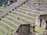 Agricultural Terraces in Ruins of Inca Site, Machu Picchu, Unesco World Heritage Site, Peru Photographic Print by Tony Waltham