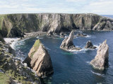 Sea Stacks in Bay Beside Aird Feinis, West Coast, Isle of Lewis, Western Isles Photographic Print by Tony Waltham