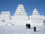 Ice Sculptures in Taiyangdao Park, Bingdeng Jie, Heilongjiang, China Photographic Print by Tony Waltham