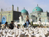 People Feeding Famous White Pigeons at Shrine of Hazrat Ali, Mazar-I-Sharif, Afghanistan Photographic Print by Jane Sweeney