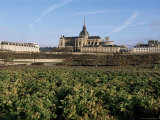 Potager Du Roi (King's Kitchen Garden), Versailles and St. Louis Church, Ile De France, France Photographic Print by Guy Thouvenin