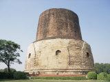 Dharmekh Stupa, Dating from the 5th Century, Sarnath, Uttar Pradesh State, India Photographic Print by Jane Sweeney