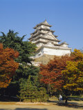 Osaka Castle, Osaka, Japan Photographic Print by Adina Tovy