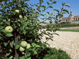 Potager Du Roi in August, and St. Louis Church, Versailles, Ile De France, France Photographic Print by Guy Thouvenin