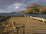 Wharf, Flowerpot, Pitt Island, Chatham Islands Islands Photographic Print by Julia Thorne