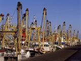 Fishing Fleet, Den Helder, Holland Fotodruck von I Vanderharst