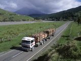 Logging Trucks on the Road Near Gisborne, East Coast, North Island, New Zealand Photographic Print by D H Webster