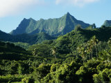 Dense Forests and Mountain Ppeaks, Rarotonga, Cook Islands, Polynesia Photographic Print by D H Webster