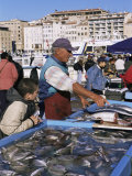 Fish Market, Vieux Port, Marseille, Bouches Du Rhone, Provence, France Photographic Print by Guy Thouvenin