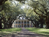 Exterior of Plantation Home, Oak Alley, New Orleans, Louisiana, USA Photographic Print by Adina Tovy