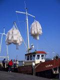 Fishing Boat, Marken, Holland Fotografie-Druck von I Vanderharst