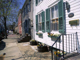 Exterior of Houses on a Typical Street, Annapolis, Maryland, USA Photographic Print by I Vanderharst