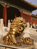 Close-Up of Lion Statue, Imperial Palace, Forbidden City, Beijing, China Photographic Print by Adina Tovy