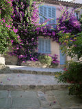Village House Covered with Bougainvillea, Grimaud, Var, Cote d'Azur, Provence, France Photographic Print by Ruth Tomlinson