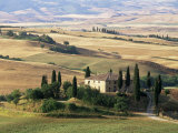 Farmhouse and Cypress Trees in the Early Morning, San Quirico d'Orcia, Tuscany, Italy Photographic Print by Ruth Tomlinson
